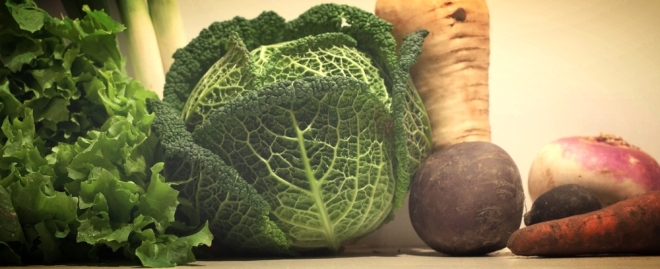 bio groenten