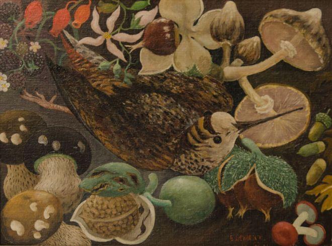 vogels-gevaert