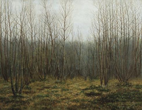 binus-boslandschap-1913-doek-51-op-65-est-7-a-10000